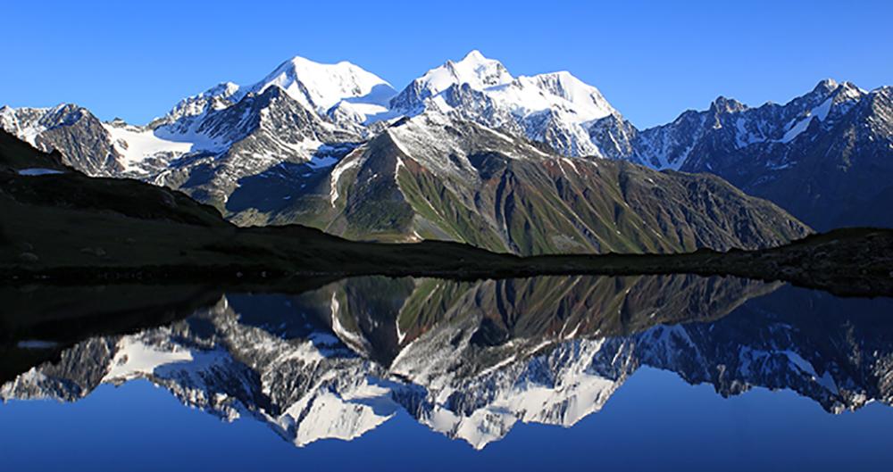 Altai Shilajit Resin - Authentic Mumie 100% Natural Liquid Paste 100 Servings (10 g) 1